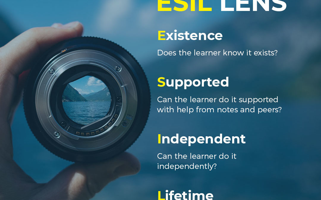 Bloom's Taxonomy is not enough: ESIL is here for the digital age